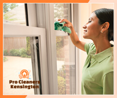 Pro Cleaners Kensington