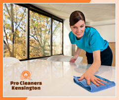 Domestic Cleaners Kensington
