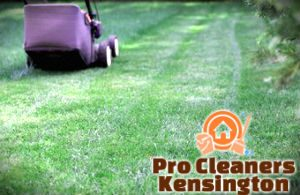 lawn-mowing-services-kensington