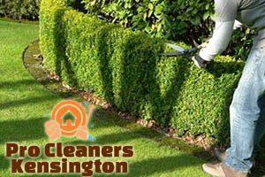 Hedge Trimming Kensington