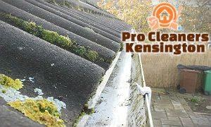gutter-cleaning-services-kensington